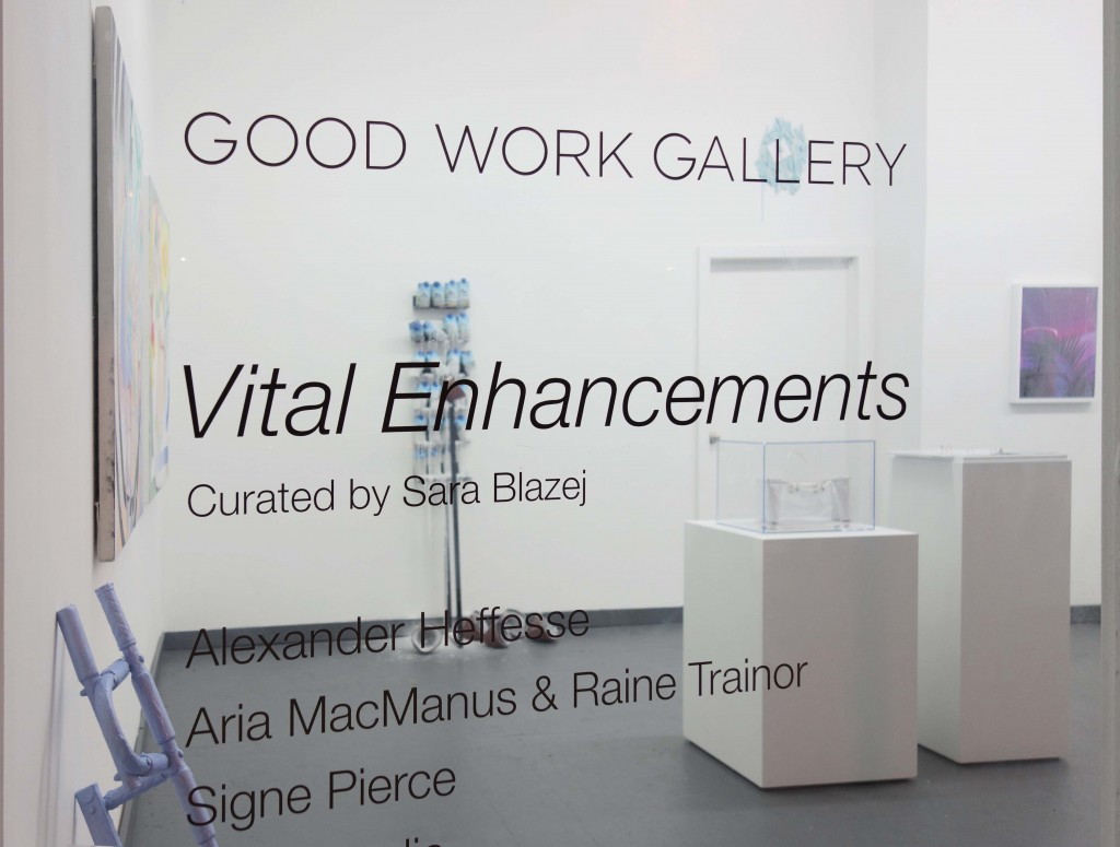 """Vital Enhancements""  Curated by Sara Blazej  June 25 - July 24th, 2016"